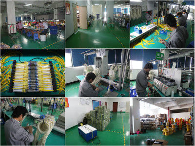 Shenzhen Wangtong Industry Company Limited